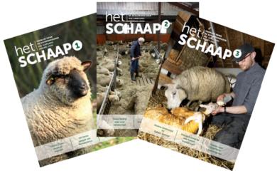 Drie edities van Het Schaap